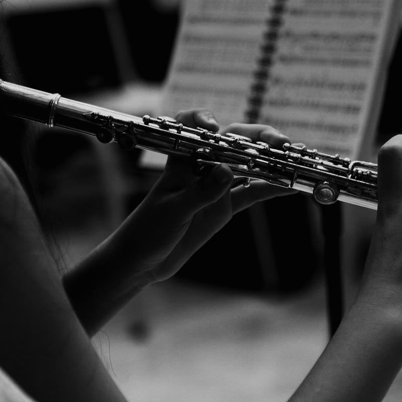 http://dublinschoolofmusic.ie/wp-content/uploads/2019/11/flute-lessons.png